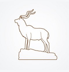 Kudu standing on the cliff angry oryx big horn st vector