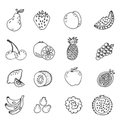 set of doodle hand drawn fruit icon vector image vector image