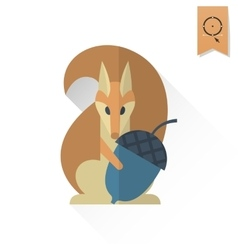 Squirrel holding acorn vector
