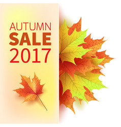 autumn leaves bright colourful autumn maple vector image vector image