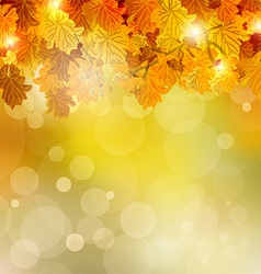 Colorful autumn leaves vector image