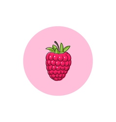 Icon Colorful Raspberries vector image vector image