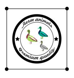 logos and badges farm animals wild duck vector image