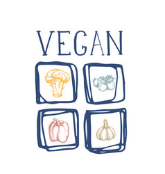 organic vegan food hand drawn icon set vector image