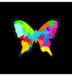 Butterfly6 vector