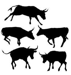 Collection of bull silhouette vector