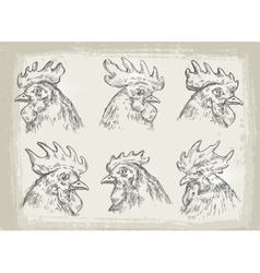Collection of hand drawn chicken vector