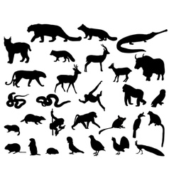 Animals of Asia vector image