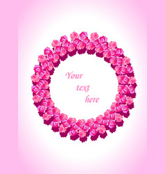 beautiful template with pink roses for cards vector image
