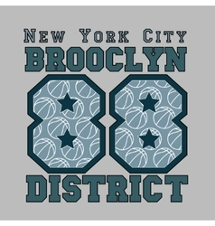 New York basketball vector image