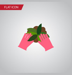 isolated sow flat icon plant element can vector image vector image