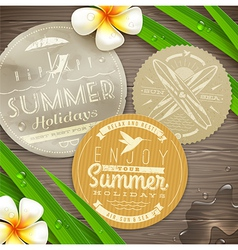 Vintage labels with vacation and travel emblems vector image
