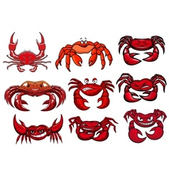 Red cartoon marine crabs set vector