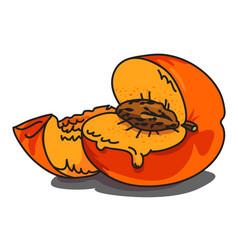 cartoon image of juicy peach vector image vector image