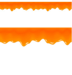 Orange jam drips grapefruit juice seamless border vector