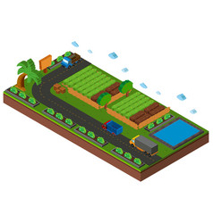 3d design for vegetables growing on farmland vector