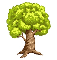 a closeup tree vector image