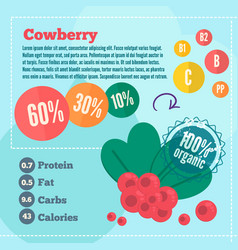 Cowberry infographics vector