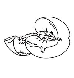Cartoon image of juicy peach vector