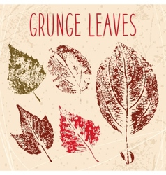 Grunge fallen leaves texture eps 8 vector