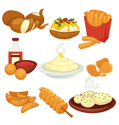 Potato food dishes snacks and cooked products vector