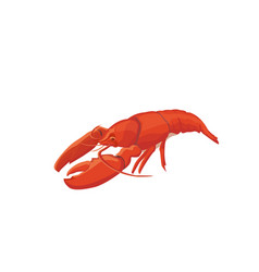 Sea food crawfish icon isolat vector