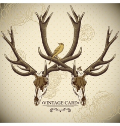 Vintage floral background with a deer skull vector