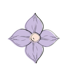 beauty flower with petals to decorative design vector image vector image