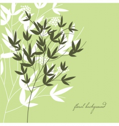 greeting card floral green background vector image vector image