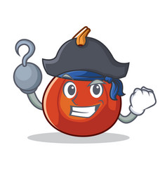 Pirate red kuri squash character cartoon vector