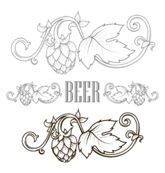 Hops ornament vector