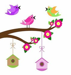 birds colorful and birdhouse on tree branches vector image vector image