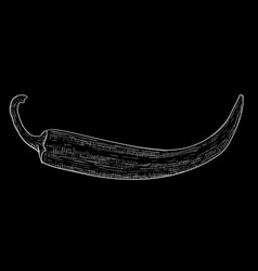 Chili pepper hand drawn sketch on black vector