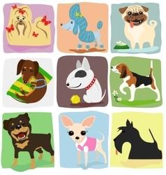 nine dog breeds vector image