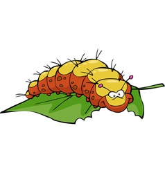 caterpillar eating leaf vector image vector image