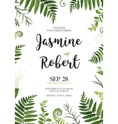Floral design card green fern forest leaves herb vector