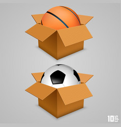 the ball in the box vector image