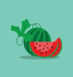 watermelon and cut off a slice vector image