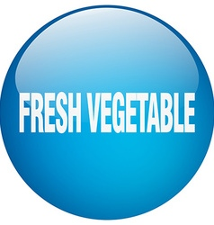 fresh vegetable blue round gel isolated push vector image