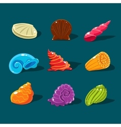 Collection of colorful shells vector