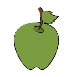 Drawing green apple leave fruit vector