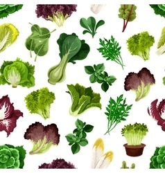 Salad greens and leafy vegetables pattern vector image vector image
