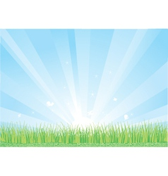 Blue sky and green grass background vector