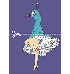 Peacock head monroe legs vector