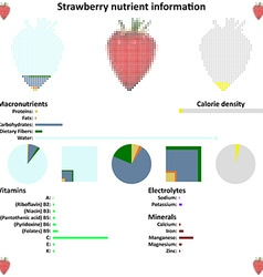 Strawberry mosaic and nutrient information vector