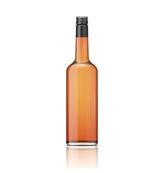 Glass whiskey bottle with screw cap vector image