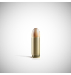Single bullet vector image vector image