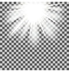 Star beams transparent vector