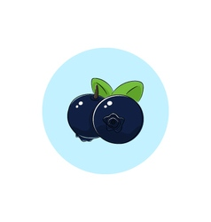 Icon colorful blueberries vector