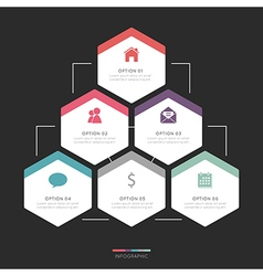 Modern hexagon infographic for 6 step vector
